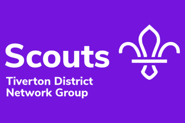 Scouts Network Flag Small 25